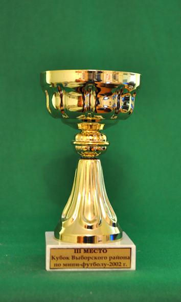 3 место Кубок Выборгского района по мини-футболу среду мужских команд
